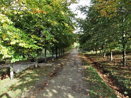 Parc et Arborétum