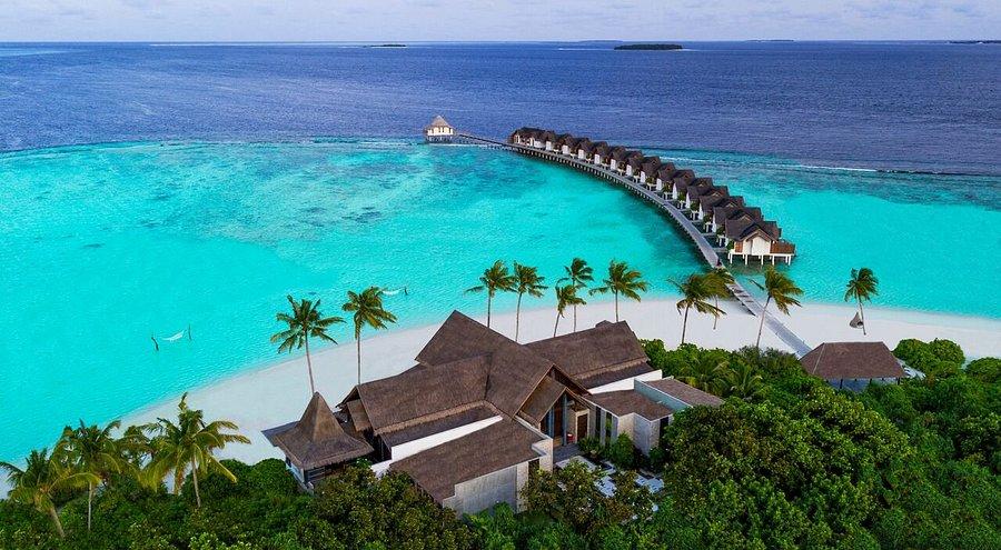 تعليقات ومقارنة أسعار فندق هوتل Furaveri Maldives Furaveri جزر المالديف منتجع Tripadvisor