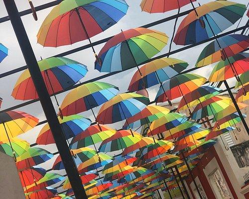 Ven a disfrutar de una lluvia de colores!!! ⛱