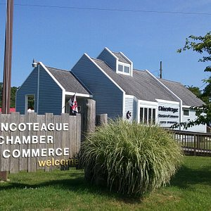 We look forward to helping you create wonderful memories on Chincoteague & Assateague Islands.