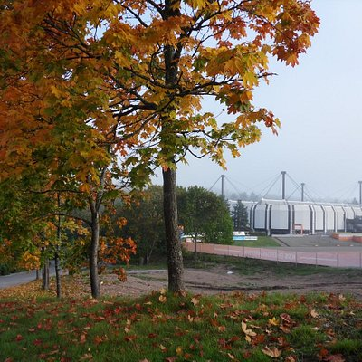 Lumon Areena is situated in Urheilupuisto Park.