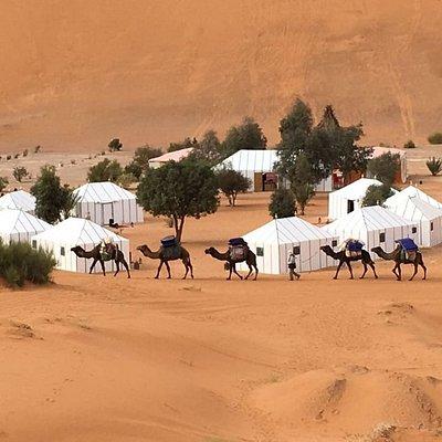 Morocco Desert Camel Trekking