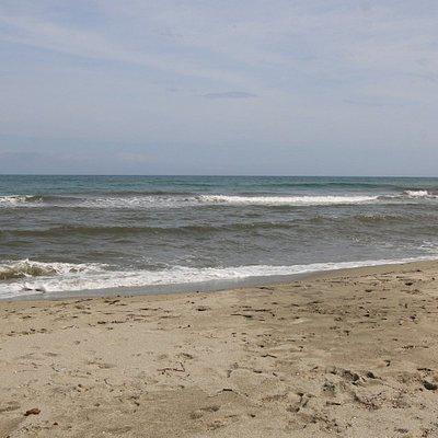 C'est une plage de sable fins, par contre on peut y voir la présence de débris d'algues, de plantes et bois échoués sur la plage.