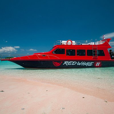 """""""Red Whale II"""" - on the famous """"mini maldives"""" sand bar which local people call """"Taka Makassar"""""""
