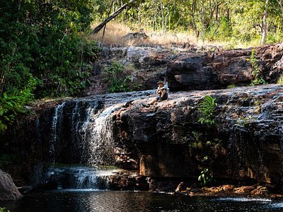 Secluded waterfall and swim spot in Litchfield National Park.  Visited seasonally on the 2 Day Litchfield Camping tour - Awaken in the Wild.