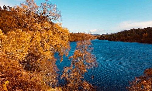 Unglaublicher Herbst im Glen Affric