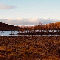 Das Ostufer des Loch Ness - traumschön und nicht so überlaufen...