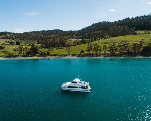 Half Day Deep-to-Dish Seafood Experience onboard a luxury catamaran from Hobart to Bruny Island
