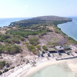 Let's try to diving or snorkeling at this place,✌️✌️ Chat me on whatsapp to book menjangan island trip +6281239750665
