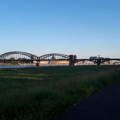 Das Foto entstand im Juni 2019 und zeigt die Südbrücke aus südlicher Richtung von den bekannten Poller Wiesen aus mit ihrem einmaligen Ausblick auf die dahinter liegende Kölner Innenstadt (inkl. Dom, Kranhäuser, Musical Dome, etc.).