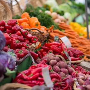 A rainbow array of produce from Gathering Together Farm