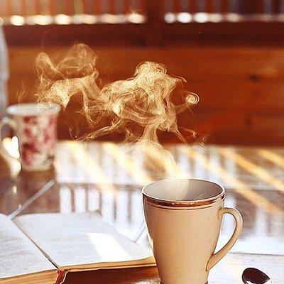 FREE hot herbal and native tea range