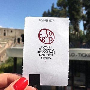 Pompeii archeological site fast track entry ticket