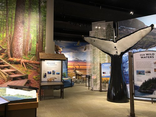 Want to walk through the rainforest trails of southeastern Alaska? How about hug a life size humpback whale tail? You can do that here!