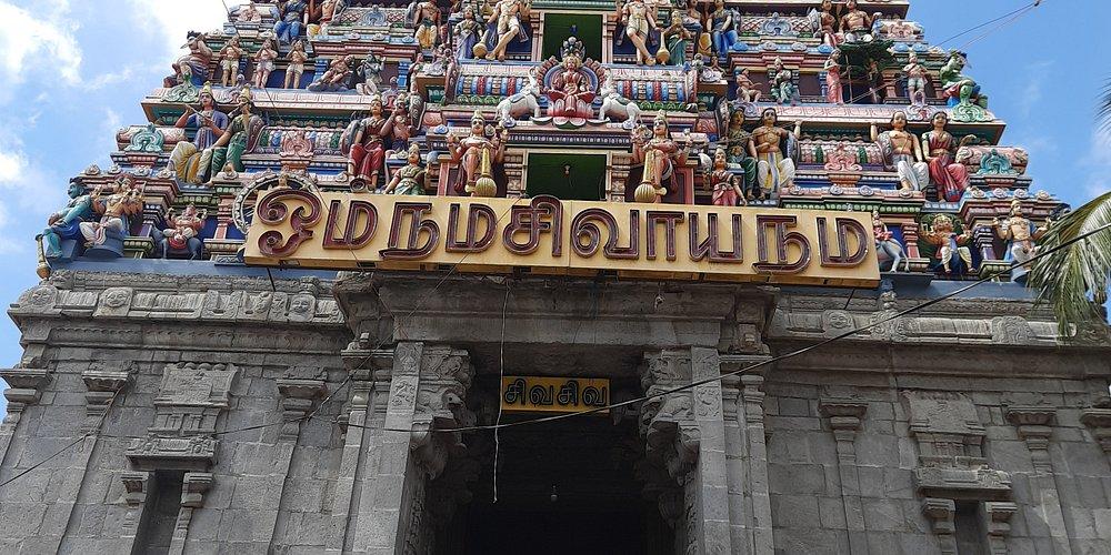 Shri Thanthonreeswarar temple,  Belur near Ayodhya patinam,  Salem. It is famous for mini sculptures.