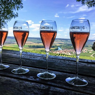 Masterclass in the heart of the vineyards. Let's learn more about Champagne while enjoying this amazing view!