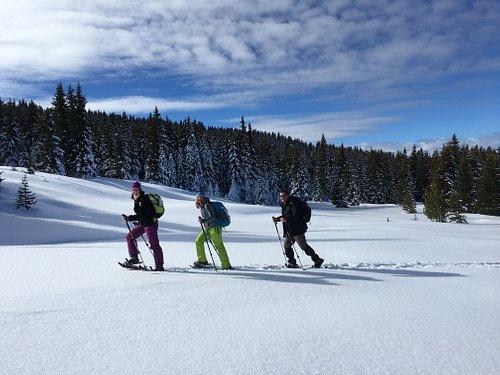 Snowshoeing in Vitosha Mountains