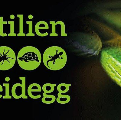 Logo Reptilienzoo Scheidegg