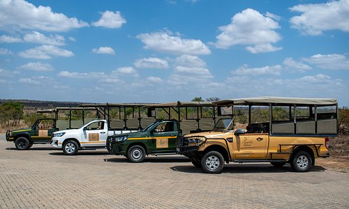 Legend Safaris vehicles