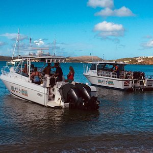 Ocean Explorer: Great for day trips to USVI and  BVI's Ocean Express: Great for diving and snorkeling BOTH: Great for you!