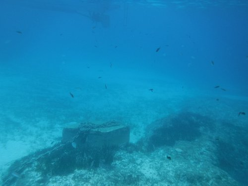 Underwater at Santa Maria Bay