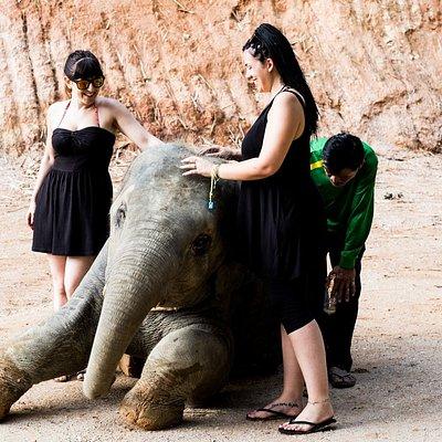 Phuket Elephant Sanctuary Village