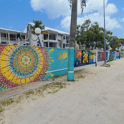 """Wall Of Art avec en premier plan la réalisation d'un artiste local très connu """"MASH"""""""