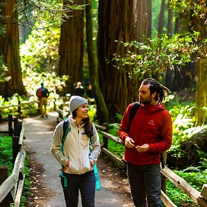 Exploring Muir Woods with an Incredible Guide.