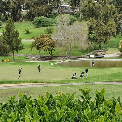 Bellville Golf Club is situated in the northern suburbs of Cape Town. This picturesque course is a golfing challenge with it's interesting layout .