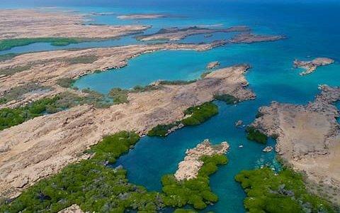 Farsan Island