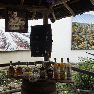 Tequilas y Licores Regalo de Dios
