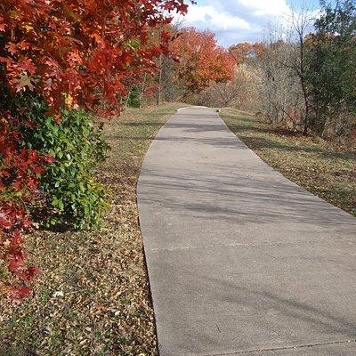 Fall hiking the Roy Orr Trail.