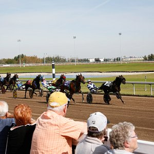 Experience live harness racing September through January at Century Mile!