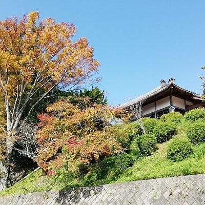 山門付近から見上げる展望所です