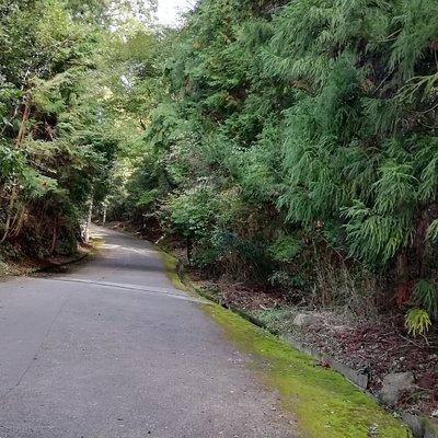 バス停から花山院菩提寺までの坂を琴弾坂と呼びます