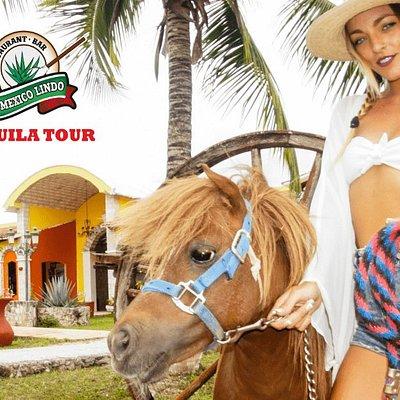 Mi Mexico Lindo Tequila Tour Hacienda Antigua Caballo Mujer