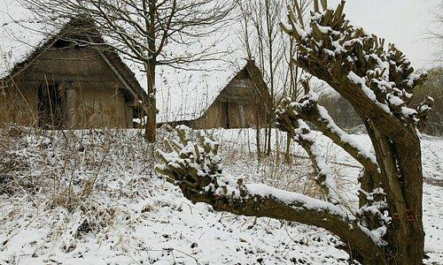Prehistorische nederzetting Swifterkamp
