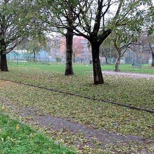 Colori d'autunno e tappeti di foglie