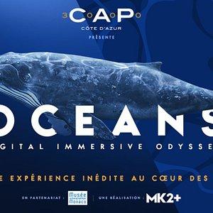 Oceans - Digital Immersive Odyssey