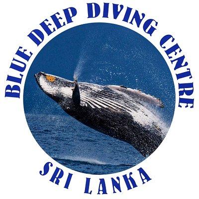 Dive centre logo