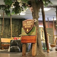 "This exhibit is full of ""outdoor"" adventures! Try out our kid-sized rock wall, float a boat all the way down Cascade Stream, and pack one of our back packs with the day's provisions and set up camp. Explore basic survival tips with kids while using your imagination in the woods! Plus, be sure to check out our year-round observation beehive! Learn the bee dance, look for the queen and get an up-close view of worker bees buzzing into the hive with pollen."
