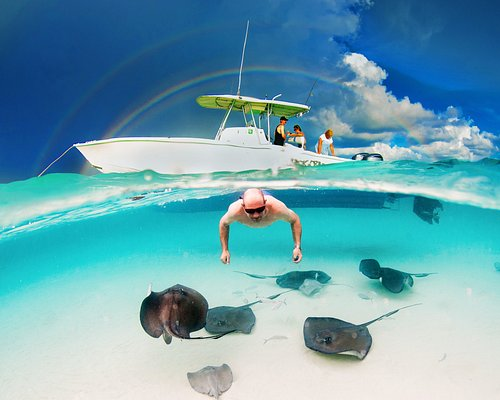 Not photoshopped! Captain Blair swimming with the rays while a double rainbow shines above him.  (Photo by Irene Corti)