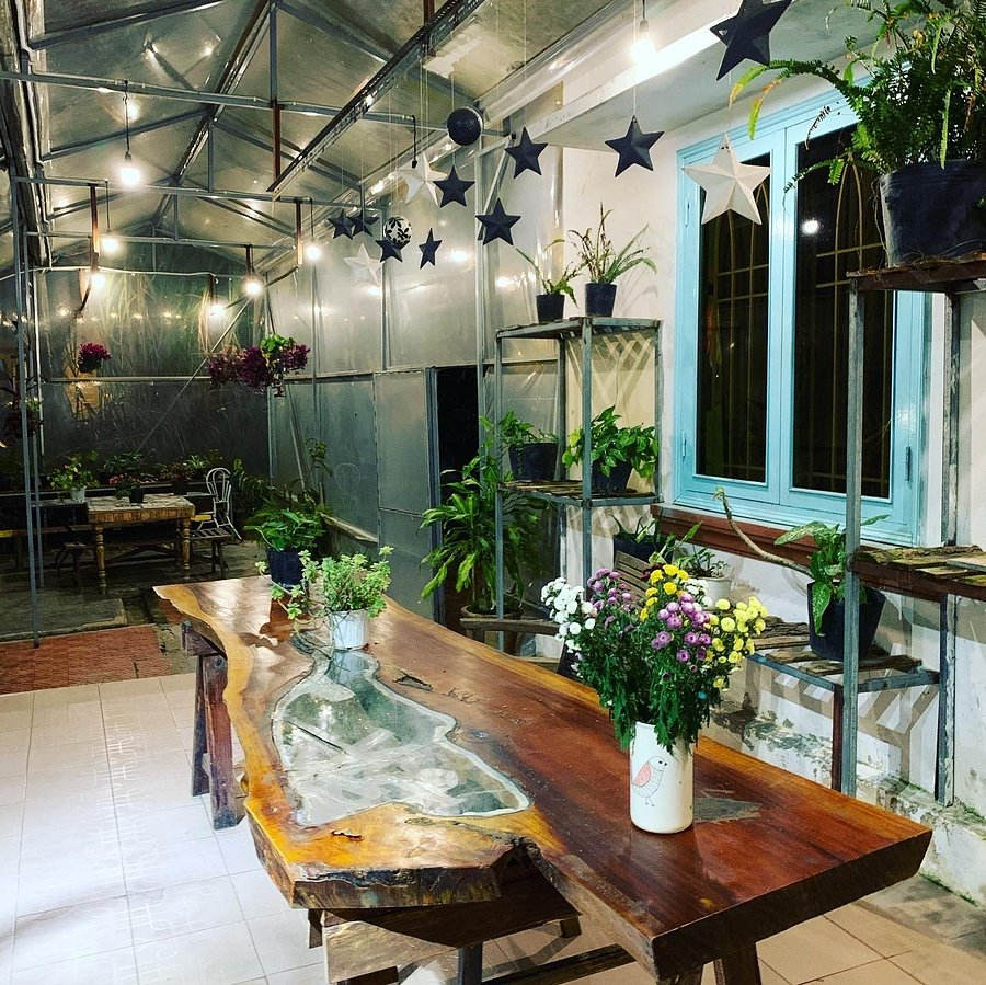 Home Of Dreamers Reviews Da Lat Vietnam Photos Of Hostel Tripadvisor