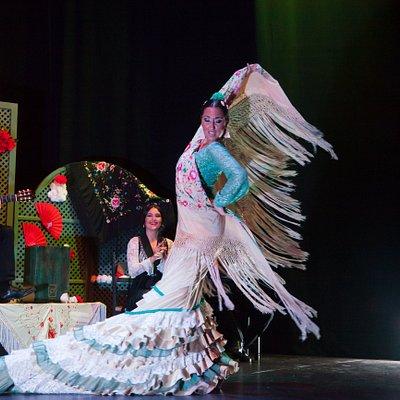 Marisa Risu es una de las bailaoras de Cuna del Flamenco. Su arte y poderío llenan el escenario.