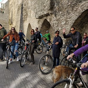 City Bike tours and rent in Tallinn Old Town