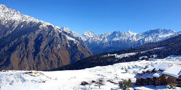View front auli
