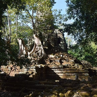 Trees growing out of the temple structure