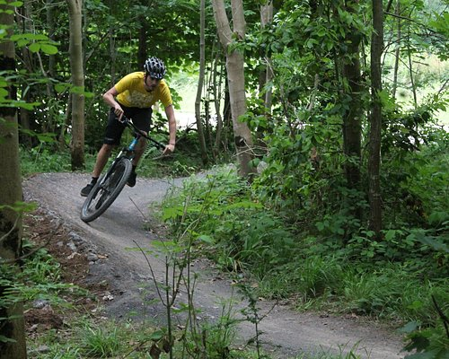 Hire a bike and ride around the awesome trails at Ashton Court or beyond