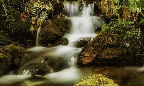 Il fragore e la forza dell'acqua presso la Sorgente Tornareccia, un angolo suggestivo della Val Fondillo nel Parco nazionale d'Abruzzo, Lazio e Molise.
