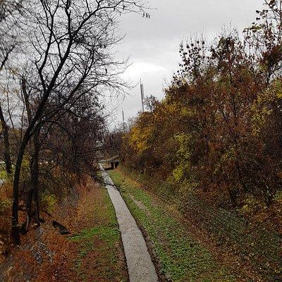 The murky River Vladaya